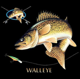 Walleye Combination Tshirt - TshirtNow.net - 2