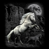 White Horse Wilderness Tshirt - TshirtNow.net - 2