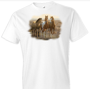 Curious Colts Horse Tshirt