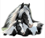 Gypsies Horse Tshirt - TshirtNow.net - 2
