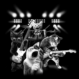 Cat Rock Guitar Tshirt - TshirtNow.net - 2