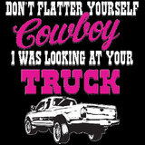 Lookin at Your Truck Country Tshirt - TshirtNow.net - 2