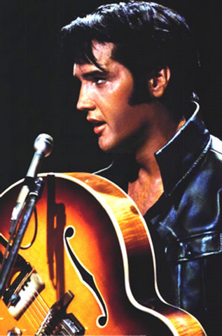 Elvis Leather Poster