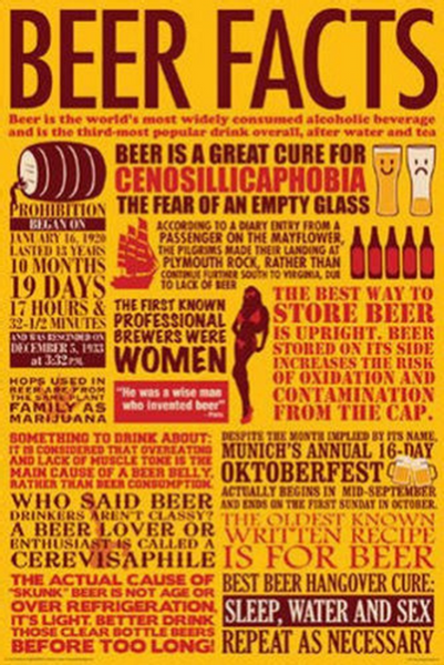 Beer Facts Poster - TshirtNow.net