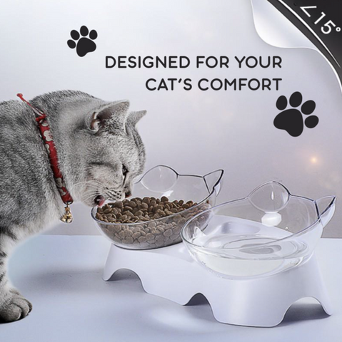 Anti-Vomiting and Non-Slip Orthopedic Cat Bowl With Raised Stand