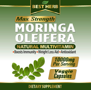 240 x Capsules Moringa Oleifera Extract Natural Multi-Vitamin  Boosts Immune System