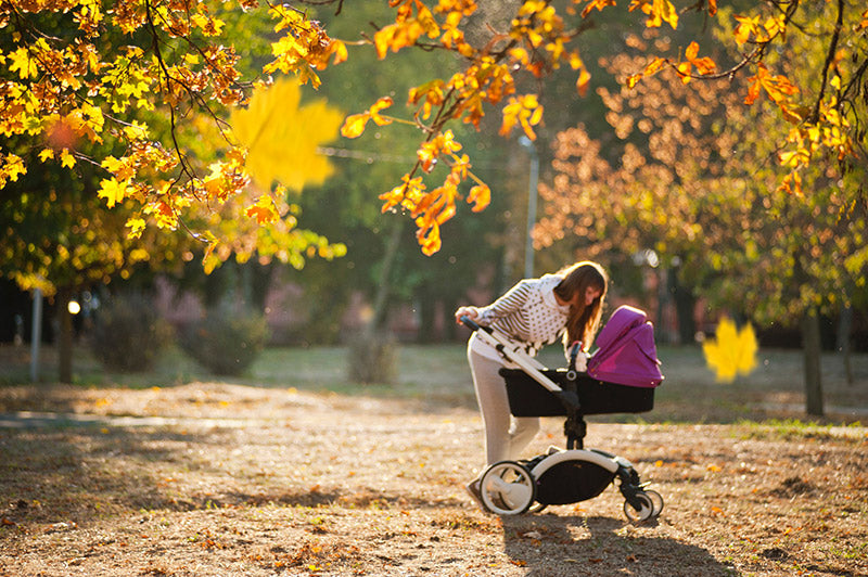 Leaf - 4 Reasons Why Baby Strollers Are Important