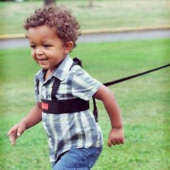 Diono Safety Harness and Reins Sure Steps - ANB Baby