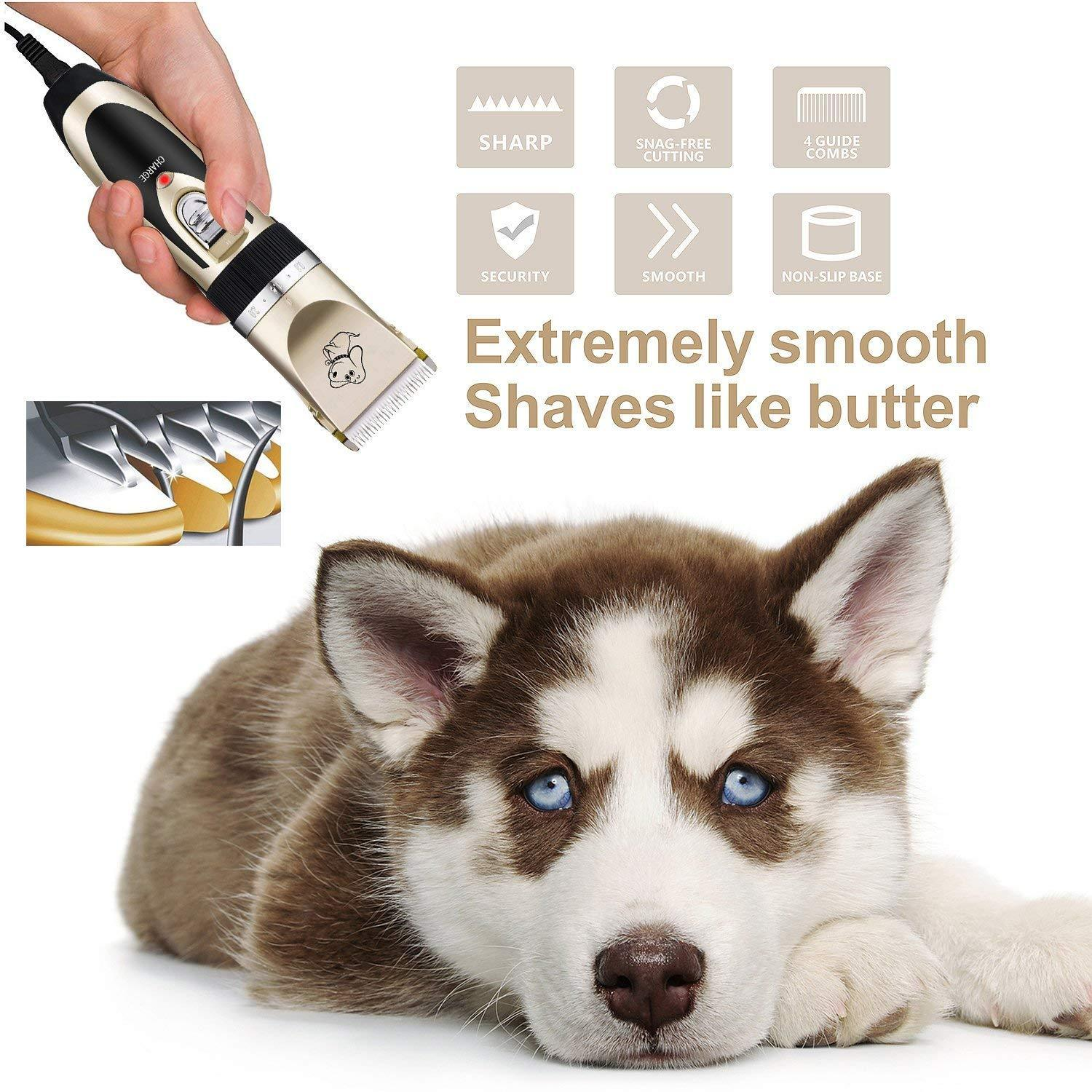 Buy one get ten countdown day!! Low noise pet hair clipper (65%OFF Today)
