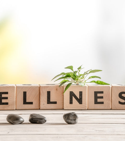 how to make a wellness plan