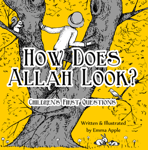 How Does Allah Look?-Islamic Books-Little Moon Books-Crescent Moon Store