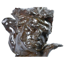 "Load image into Gallery viewer, ""Le Rhône"" Bronze sculpture bust of a man's head, France, Art Deco. Signed André C. Vermare, c.1910"
