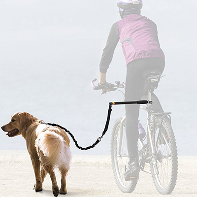 Hands Free Bicycle Dog Leash for Bike Riding Safe with Pets
