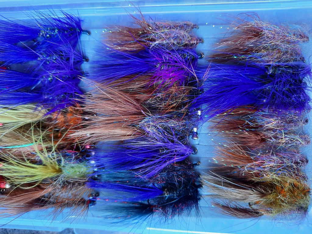 trout fly fishing fish catch tying