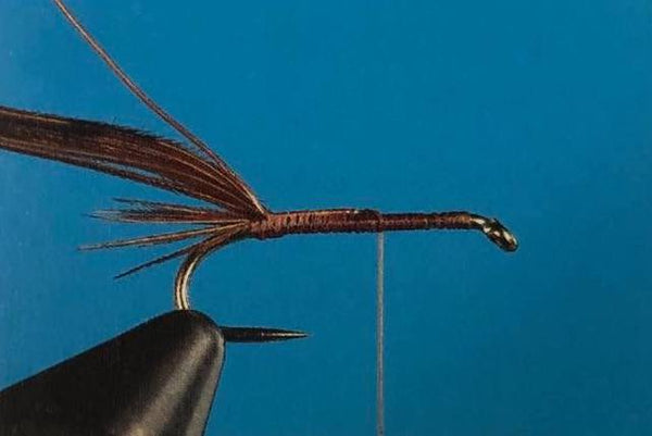 pheasant tail nymph feather barbs fly fishing tying