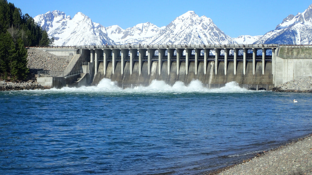 snake river dam fishing