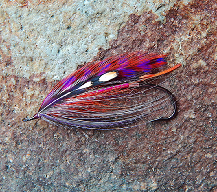 purple prince fly variant