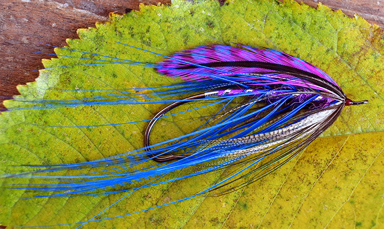 steelhead spey fly with hackles