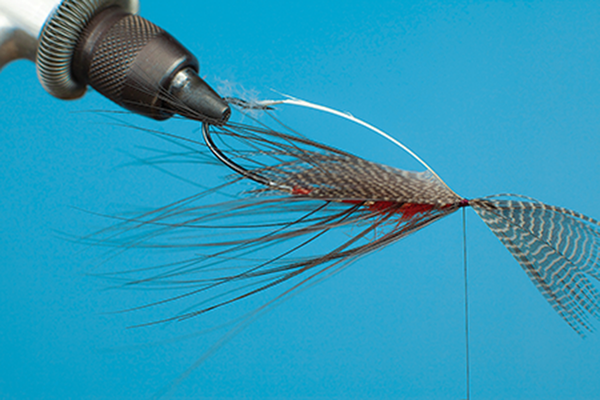 hackle fly tying
