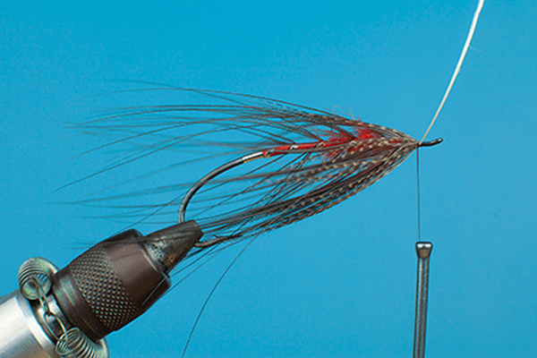hackle fly tying spey