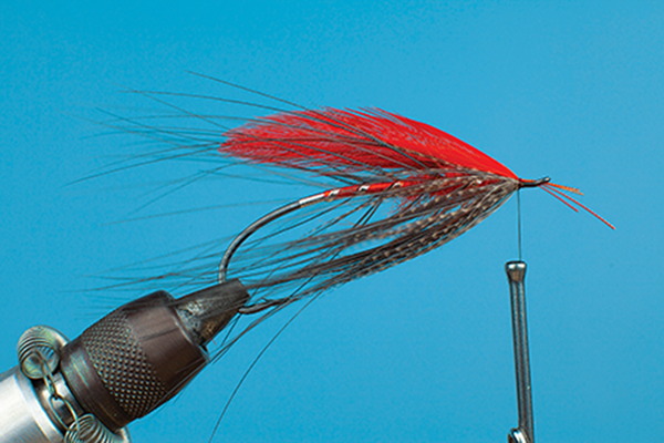 steelhead fly tying hackles fishing