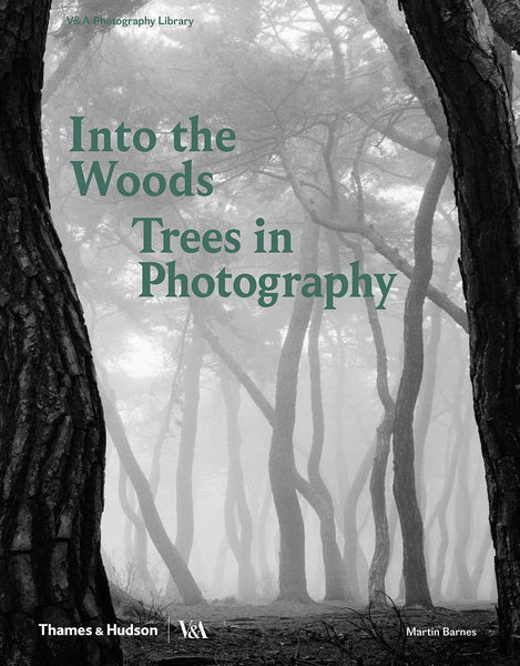 In the Woods: Trees in Photography
