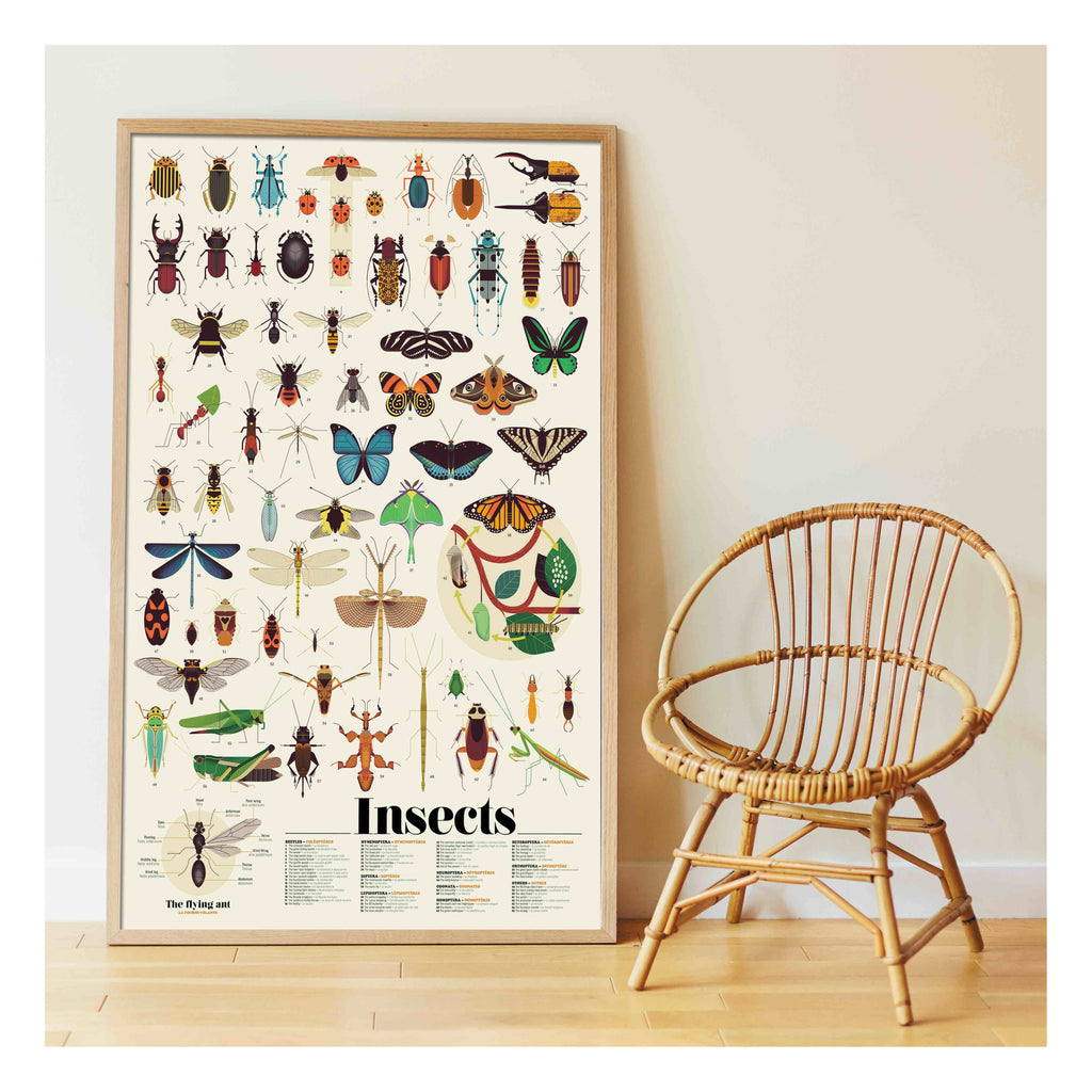 Poster de Pegatinas Poppik Insects