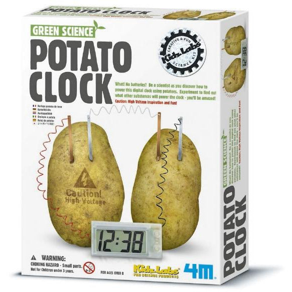 Green Science Potato Clock - KidzLabs