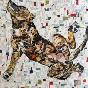 collage art showing a happy brown dog