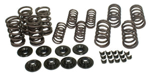 BUG BUGGY RACING DUAL VALVE SPRING KIT W/ RETAINERS & LOCKS, 4041