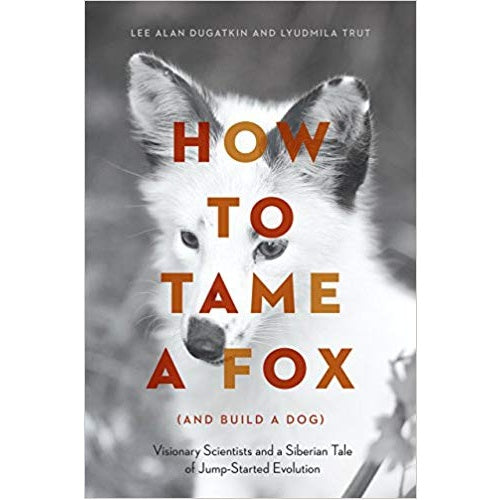 How to Tame a Fox