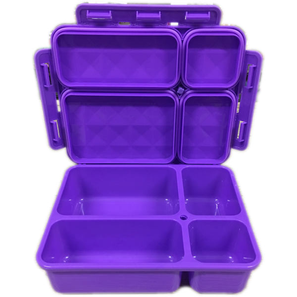 Go Green Medium Lunch Box - Purple