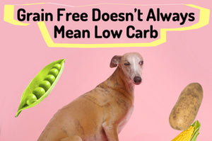 Grain Free Doesn't Always Mean Low Carb