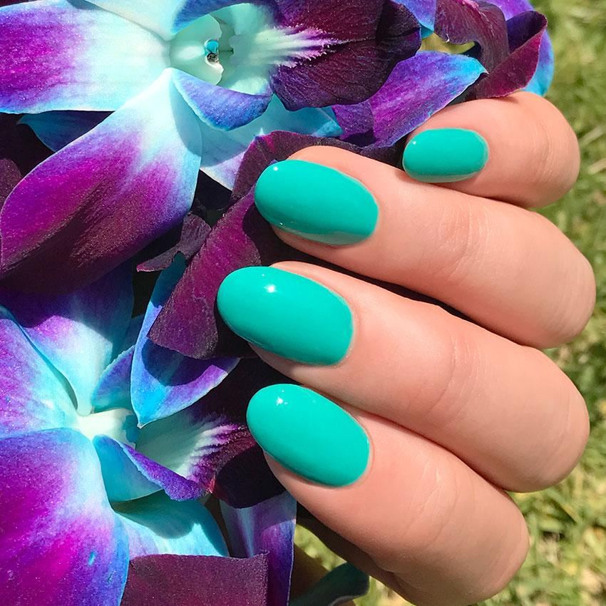 The Teal Appeal Nail Polish