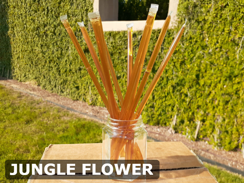 Jungle Flower Honey Sticks - All-Natural & Unfiltered