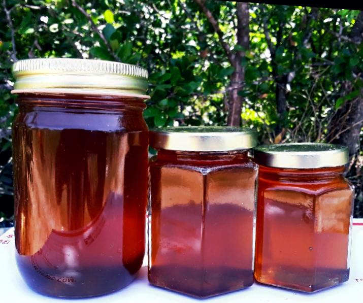 Louisiana Cajun Swamp Honey