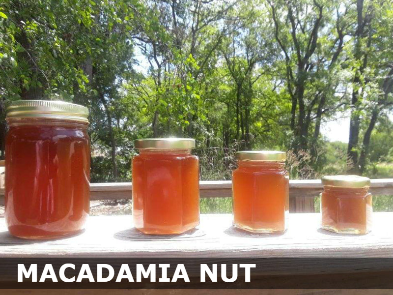 Macadamia Nut Honey