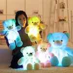 LED Teddy Bear Stuffed Animals