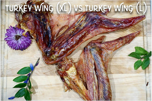 Turkey Wing