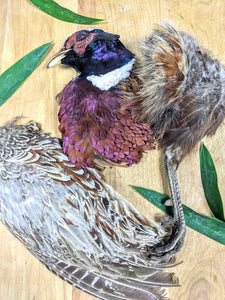 Pheasant (Whole Prey/Chunked)