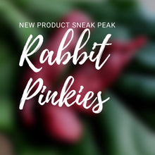 Load image into Gallery viewer, Whole Prey Rabbit Pinkies