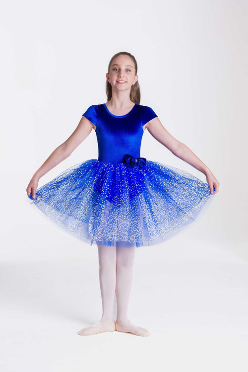 Imperial Dress  Costume Collection  CHD21 - Studio 7 Dancewear