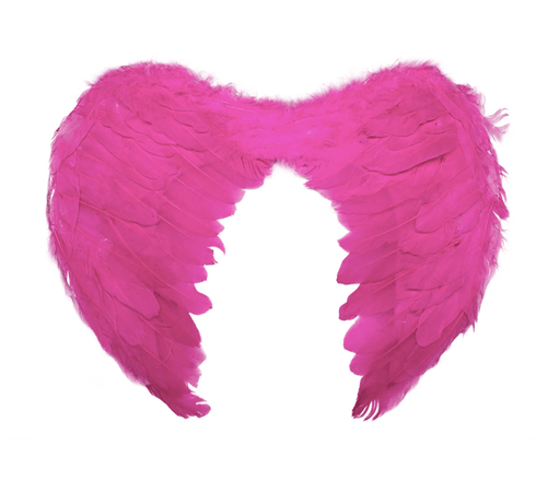 Angel Wings devil halloween bird costume fancy dress feather party