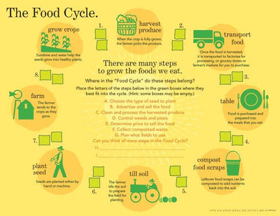 Food Cycle Handouts