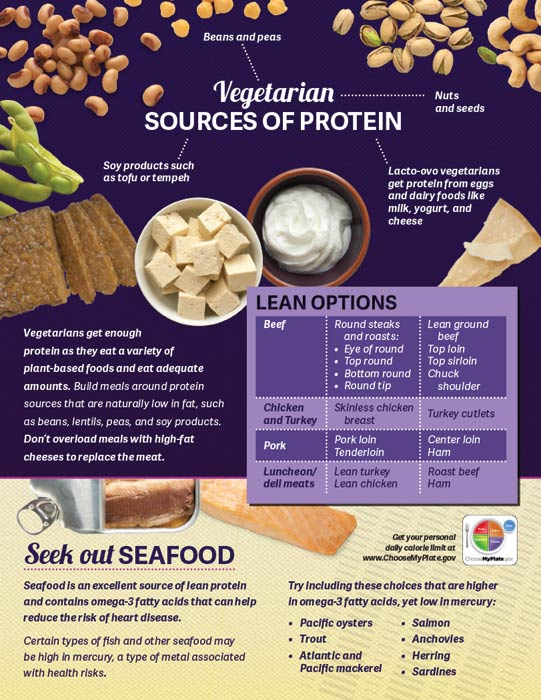 Protein Handouts