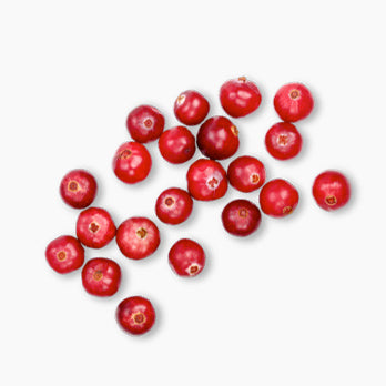 https://cdn.shopify.com/s/files/1/0030/5161/8373/files/cranberry.jpg?14756833271996674918