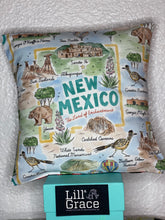 Load image into Gallery viewer, New Mexico Pillow
