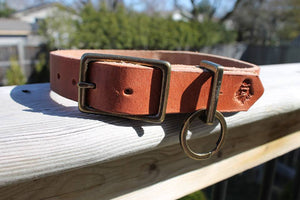 Ugly Muggin Leather Dog Collar
