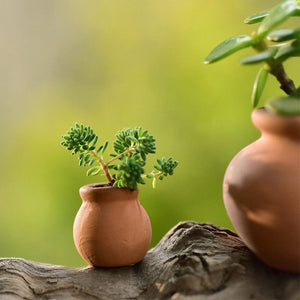 2Pcs Small Mini Terracotta Pots
