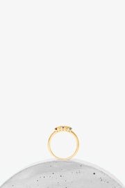 Penta 5-Stone Briana Gold Ring | Tijo Jewellery